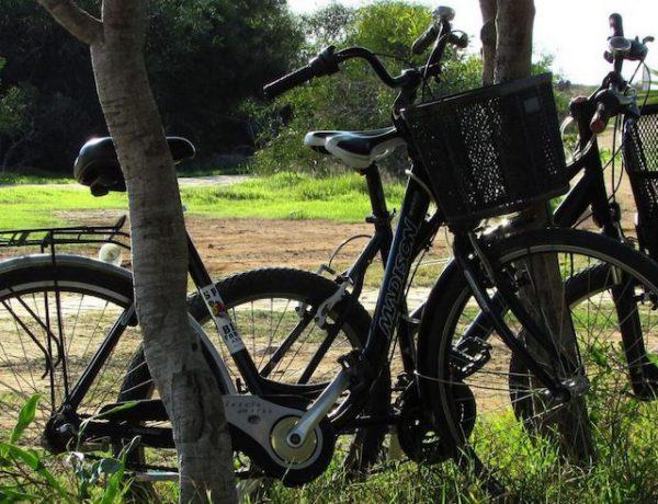 fietsen brabant